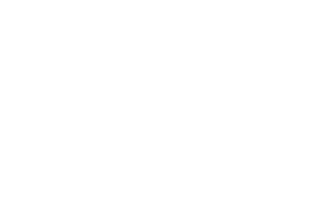 Basic Logo - Nourishing Brands white